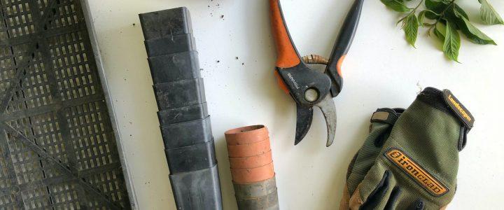 Quels sont les équipements et outils indispensables pour entretenir son jardin ?